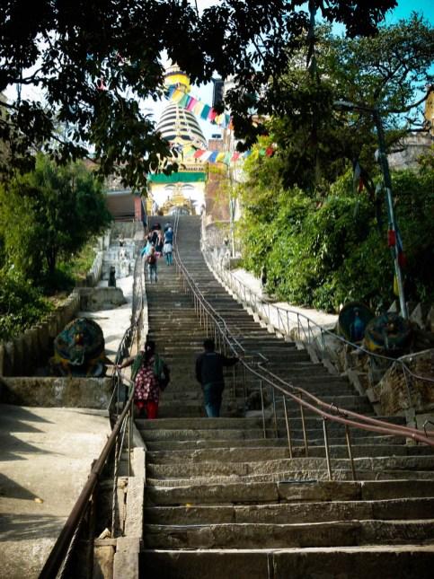 Il faut mériter le sommet du temple des singes © Topich