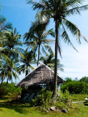 Petite hutte créole © Topich