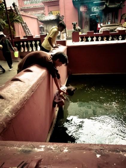 La pagode aux tortues