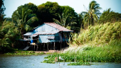 Bras du Mékong