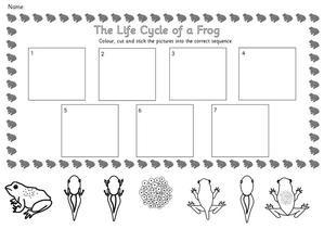 Frog Worksheets 3