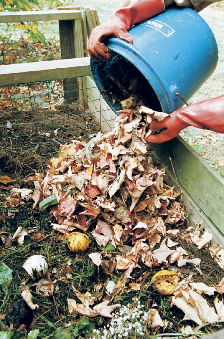 TOP 10 Things to Know About Home Composting
