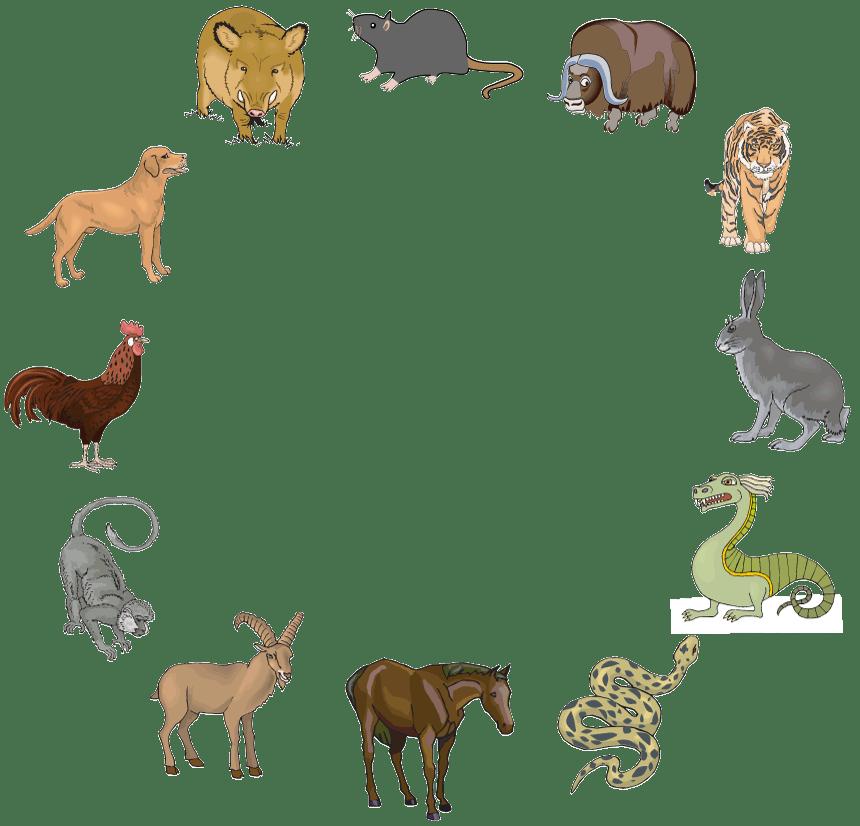 The Twelve Chinese Zodiac Animals