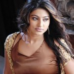 Sneha in another controversy