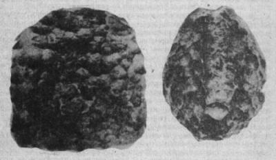 Ископаемый метеорит нетрадиционной правильной формы был обнаружен в куске бурого угля одним из рабочих с местной фабрики, артефакт весом 785 грамм был незамедлительно передан ученым. По первичным предположениям, исследователи выдвинули теорию о наземной обработке метеорита. Выяснить, кто и в каких целях нанес точные грани на метеорит так и не удалось.