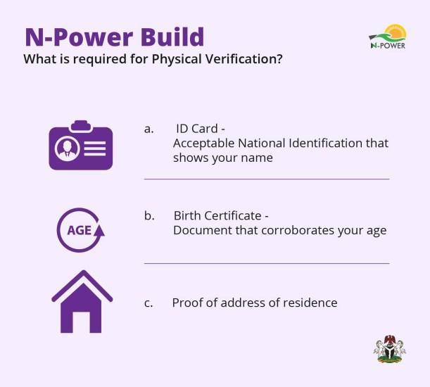 N-Build physical verification