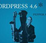 wordpress_pepper_thumb