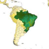 TOPOSIM_SouthAmerica_Brazil_cov_612x612