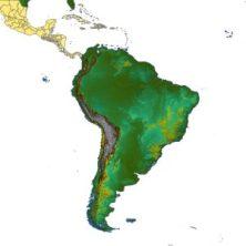 TOPOSIM_Continents_SouthAmerica_cov_612x612