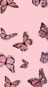 150 Pink wall ideas in 2021 | pink