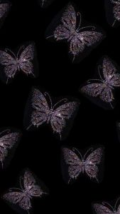 Butterfly Iphone Wallpaper To