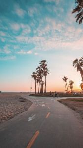How To Survive A California Winter |