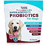 10 Best Dog Food For Yeast Infections Reviews For 2019
