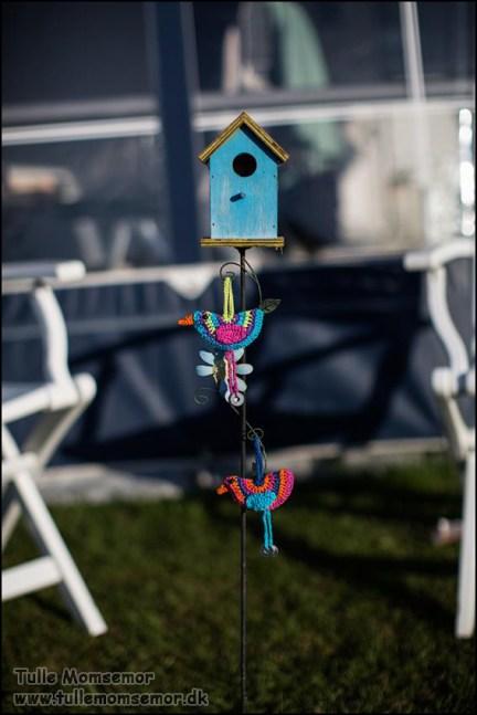 Hæklede fugle til mit fuglehus