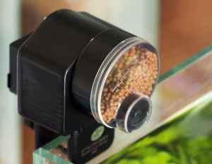 Automatic Fish Tank Pond Food Auto Feeder Feeding Timer Aquarium New