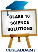 CBSE NCERT Solutions for Class 10 Science available to download in PDF