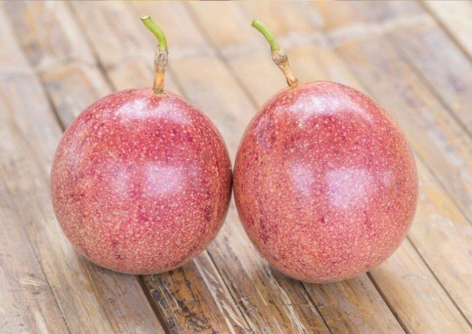 Passiflora passion fruit