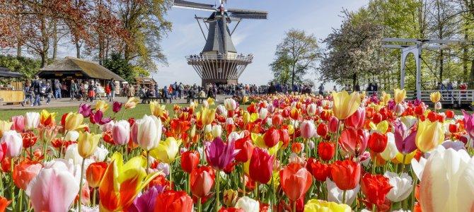 CroisiEurope apuesta por sus fluviales en Holanda para Semana Santa