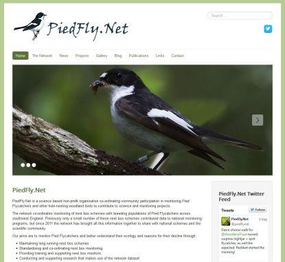 PiedFly.net