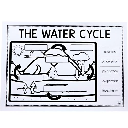 small resolution of Teaching Water Cycle Worksheets   Printable Worksheets and Activities for  Teachers