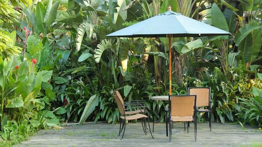 Nei giorni in cui il solleone picchia duro, i nostri ombrelloni da giardino sono pronti a fare il loro dovere proteggendoti da caldo, luce e raggi uv. I 12 Migliori Ombrelloni Da Giardino 2021 Toptencasa It
