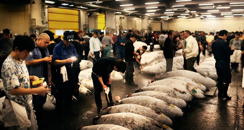 Top Fish Market in the World