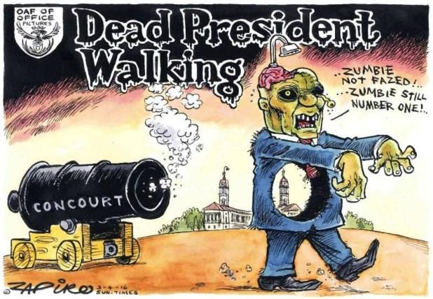 Zapiro (6)