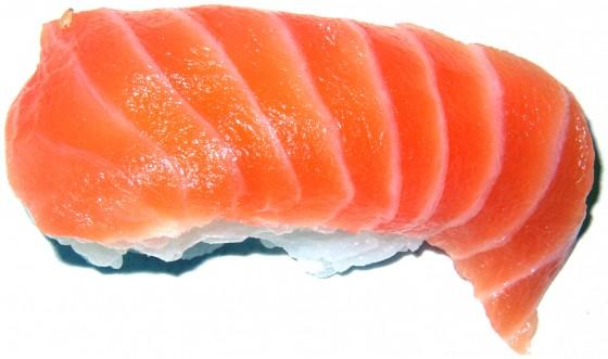fish 560x331