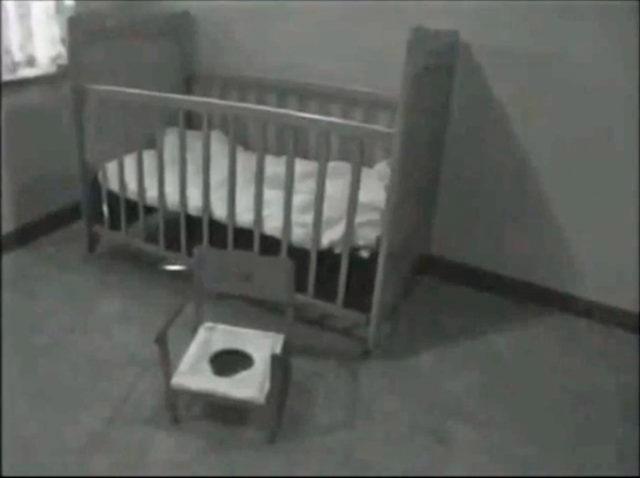 crib potty chair for genie