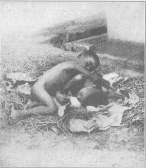 kamala-and-amala-feral-children-india