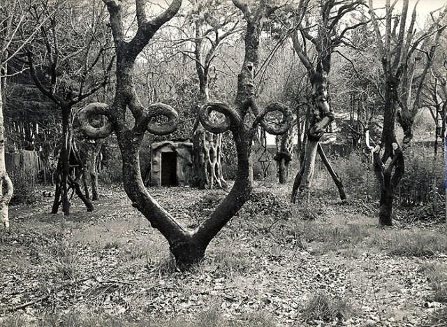 circus-trees