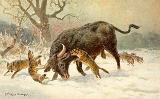 extinctanimals5