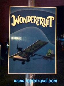 Fin wonder