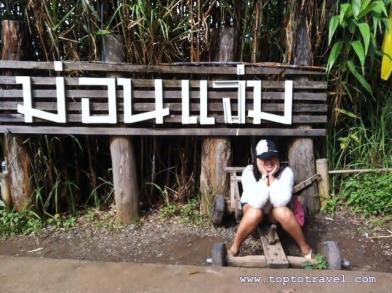 thairent245