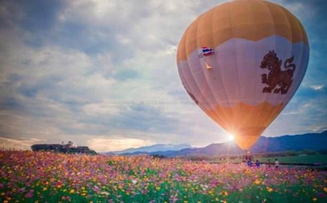 Balloon Festa 5