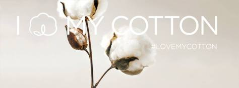 cotton usa-11