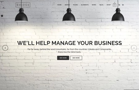 Best Premium One Page WordPress Themes -