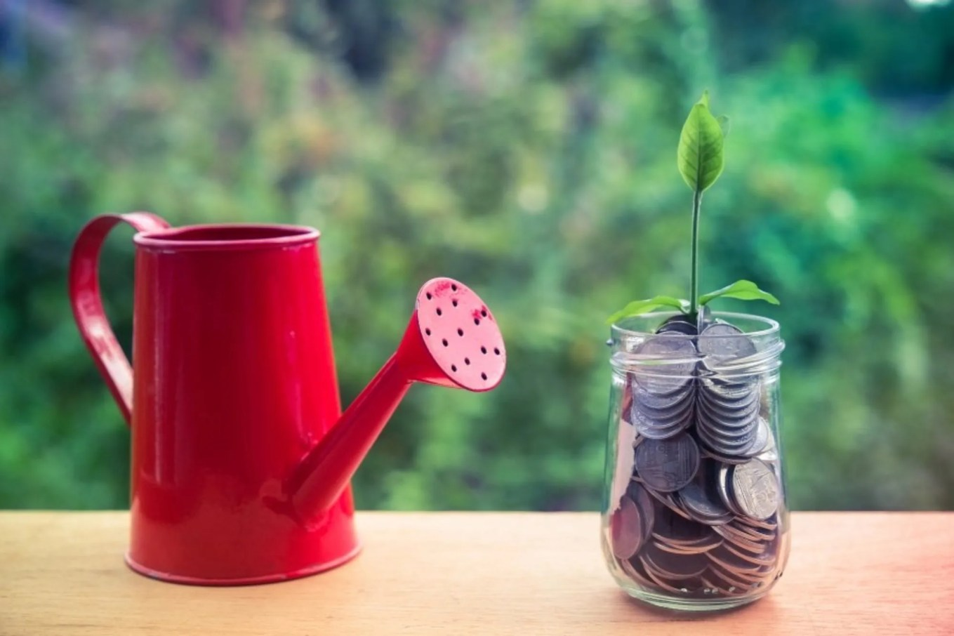 What You Should Know About Seasonal Investing -