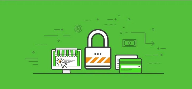 All You Need to Know About Different SSL Certificates, But Had No One To Ask -