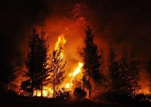 Delheim, fire - b2ap3_large_1-17