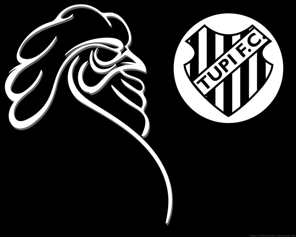 galo do face 11659446_843013765777631_436262013266842299_n