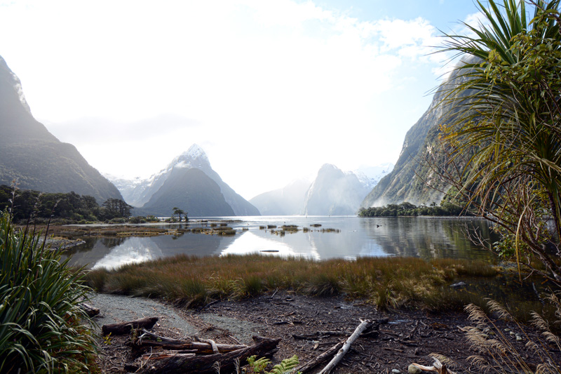 Visiting the Eighth Wonder of the World, Milford Sound
