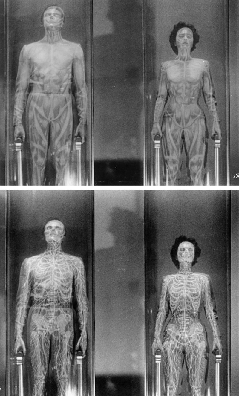 This Island Earth (Universal-International, 1955). Cal (Rex Reason) and Ruth (Faith Domergue) undergo transformation in the conversion tubes to prepare them for the change in atmospheric pressure on Metaluna. This sequence was achieved by combining cel animation by Frank Tripper with live action footage. Click to enlarge.