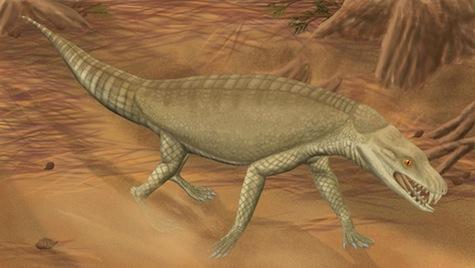 Armadillosuchus