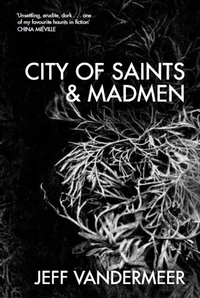City of Saints and Madmen Jeff VanderMeer interview Tor UK reissue