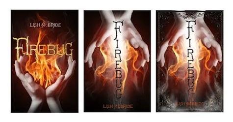Firebug Comps Lish McBride
