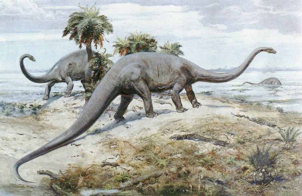 Image result for Dinosaurs' Long Tails