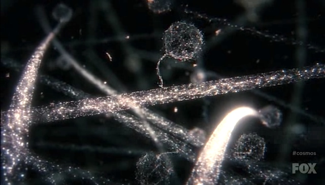 Cosmos: A Spacetime Odyssey episode 2: Some of the Things That Molecules Do