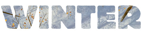 Winter art gallery Tor.com