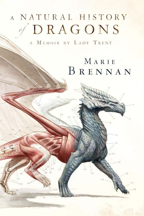 A Natural History of Dragons Marie Brennan book cover